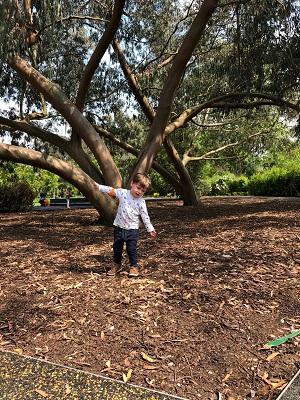 Marley enjoying himself in the Childrens Garden at Kew Gardens